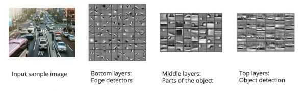 Figure 3: Layers of CNN. Image sources: Unsplash; Lee H. et al. (2011). Unsupervised Learning of Hierarchical Representations with Convolutional Deep Belief Networks. Communications Of The ACM